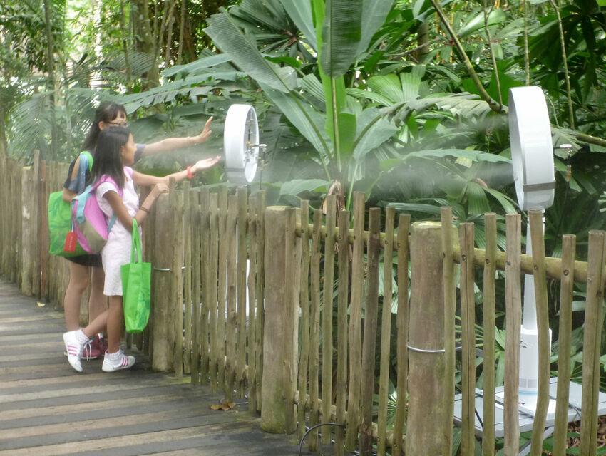 Mandai Zoo: Outdoor Comfort with Dry Mist