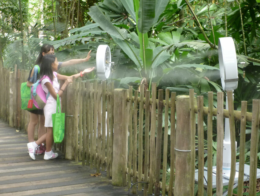 Mandai Zoo: Outdoor Comfort with Dry Mist