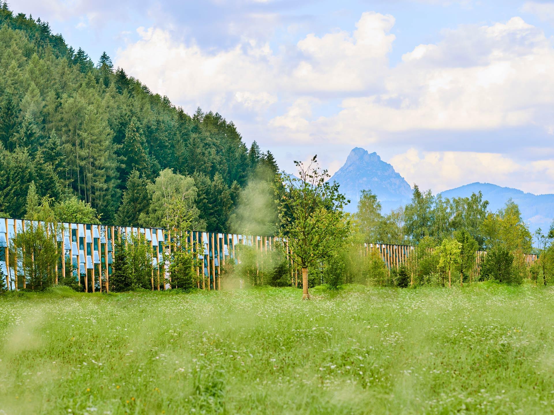 Grüne Erde World – Visitor Center + Production