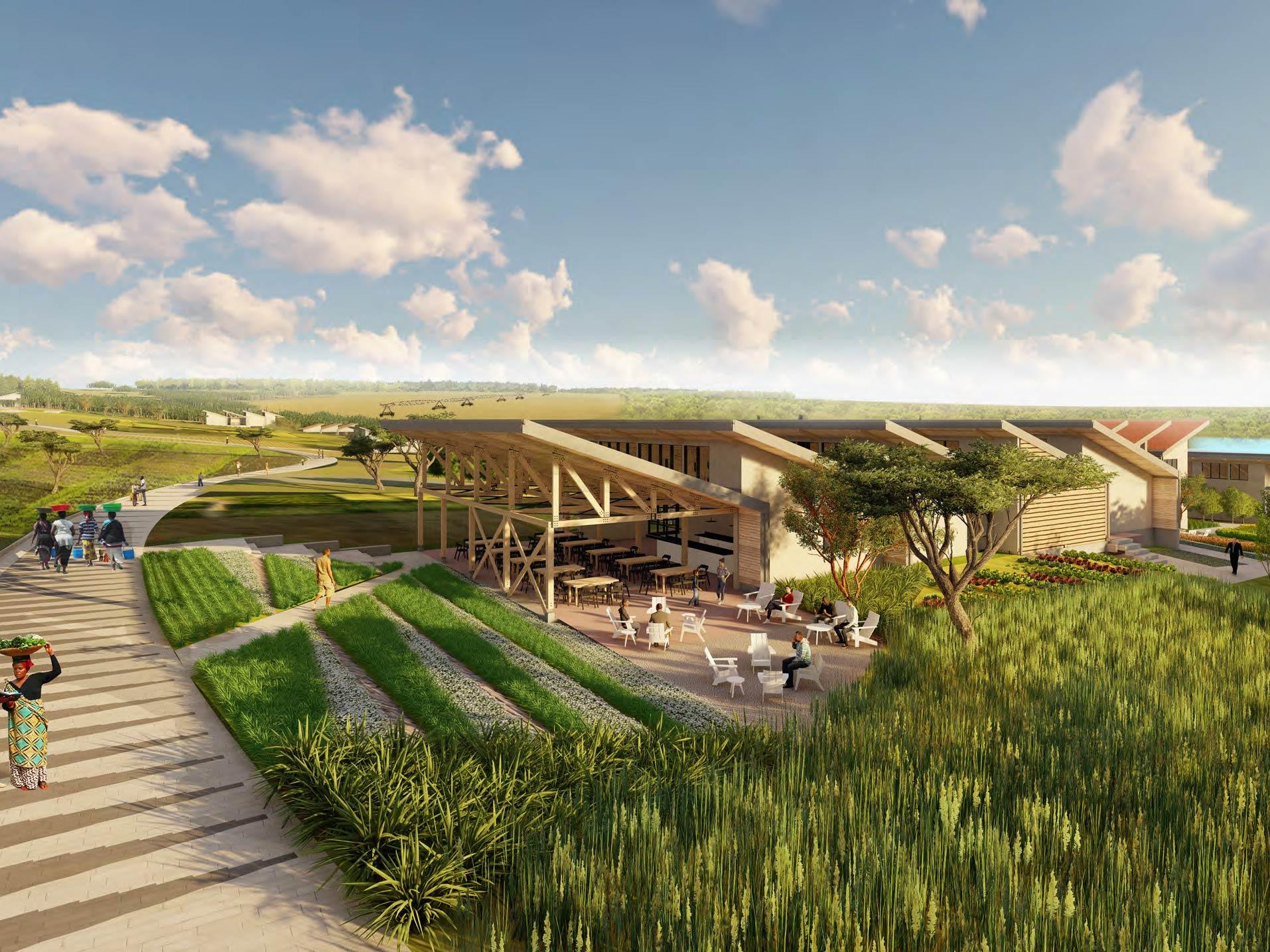 Rwanda Institute for Conservation Agriculture RICA