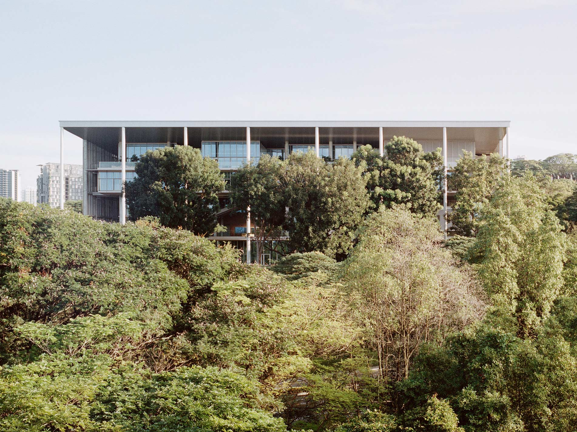 Climate-positive: NUS School of Design and Environment