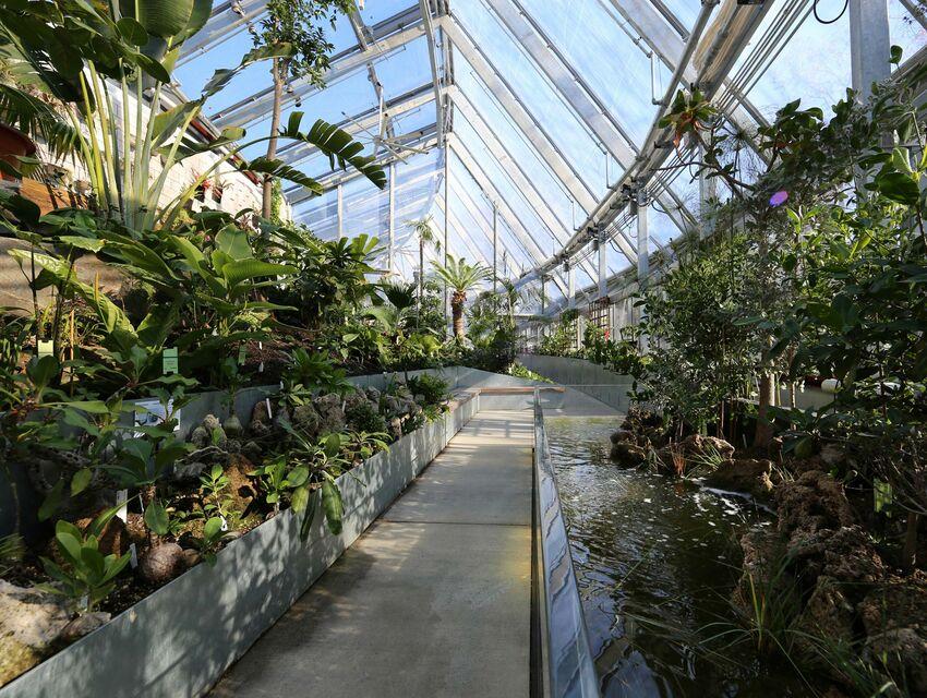 Global Flora Margaret Ferguson Greenhouses